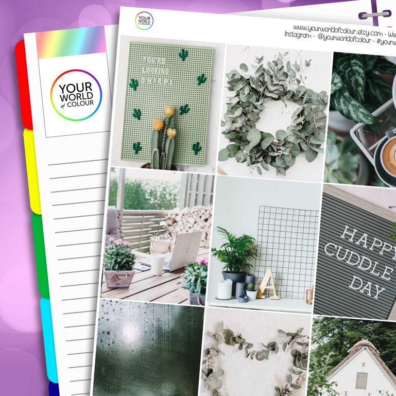 Green Faze Erin Condren Weekly Planner Sticker Kit