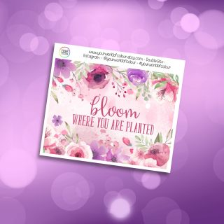 Bloom Double Box Add On
