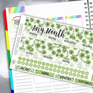 Lucky Erin Condren Monthly Sticker Kit