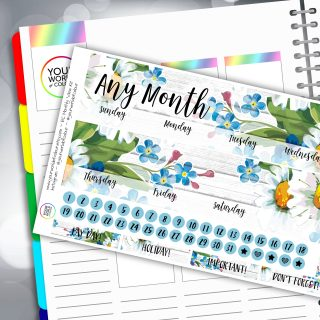 Daisy Daisy Erin Condren Monthly Sticker Kit