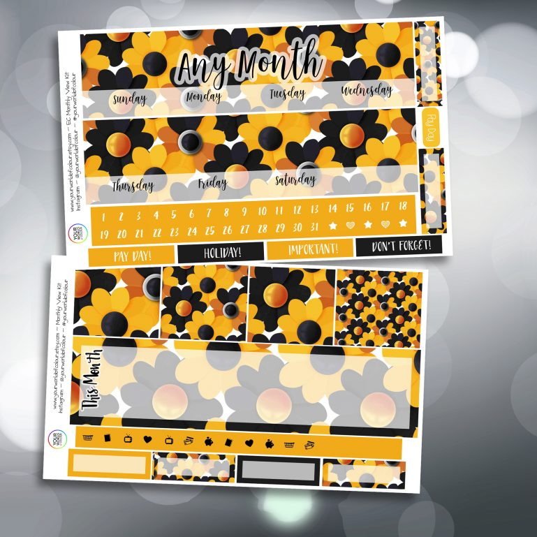 Crazy Daisy Two Sheet Erin Condren Monthly Planner Sticker Kit