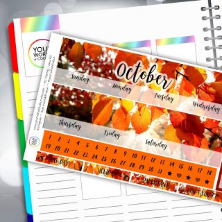 Fall Erin Condren Monthly Sticker Kit