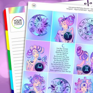 Zodiac Erin Condren Weekly Planner Sticker Kit