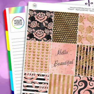 Blush and Gold Erin Condren Weekly Planner Sticker Kit