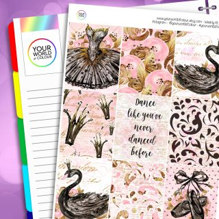 Black Swan Erin Condren Weekly Planner Sticker Kit