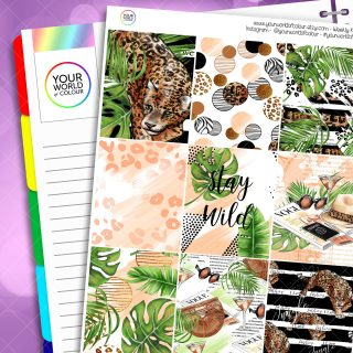 Stay Wild Erin Condren Weekly Kit