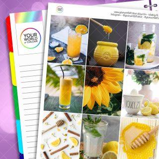 Honey and Lemon Erin Condren Weekly Planner Sticker Kit