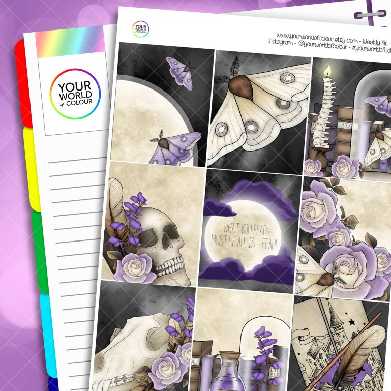 Lupin's Fear Erin Condren Weekly Planner Sticker Kit