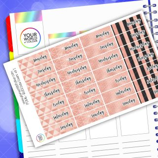 Date Cover Planner Stickers - Blush Vol 1
