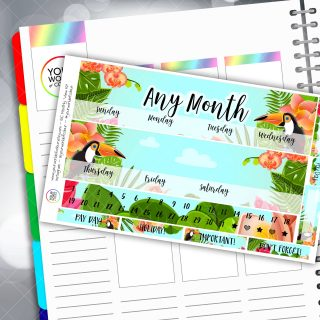 Tucan Play That Game Two Sheet Monthly Overview Sticker Kit