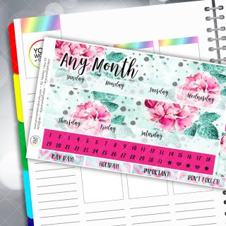 Pink Beauty Monthly Overview Sticker Kit