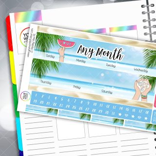 Summertime Erin Condren Monthly Planner Sticker Kit