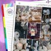 Calm Erin Condren Weekly Planner Sticker Kit