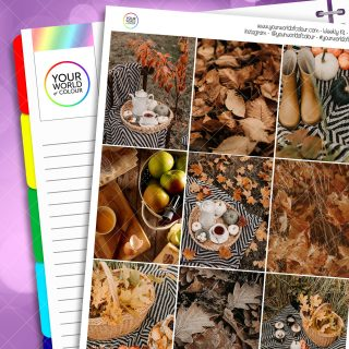 Autumn Picnic Erin Condren Weekly Planner Sticker Kit