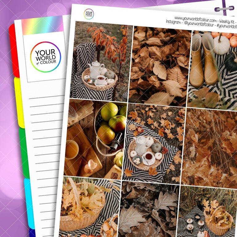 Autumn Picnic Erin Condren Weekly Planner Sticker Kit