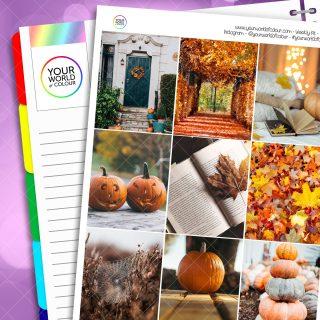 Pumpkin Patch Erin Condren Weekly Planner Sticker Kit