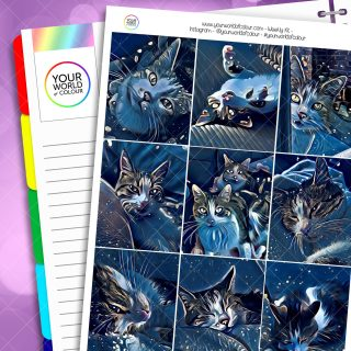 Galaxy Cats Weekly Planner Sticker Kit