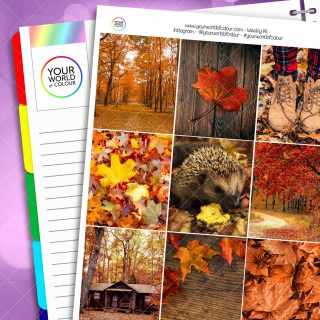 Fall Into Autumn Weekly Planner Sticker Kit