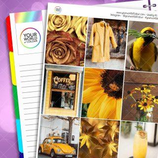 Hint Of Yellow Weekly Kit