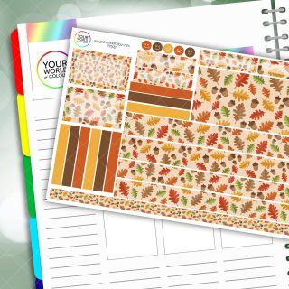 Acorn Lane Passion Planner Daily Sticker Kit