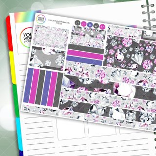 Unbreakable Passion Planner Daily Sticker Kit