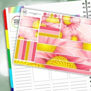 Pink Daisy Passion Planner Daily Sticker Kit