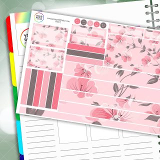 Pink Dreams Passion Planner Daily Sticker Kit