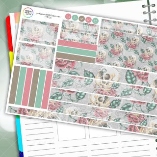 Muted Skull Passion Planner Daily Sticker Kit