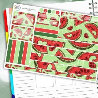 Watermelon Love Passion Planner Daily Sticker Kit