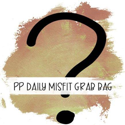 Passion Planner Daily Misfit Grab Bag