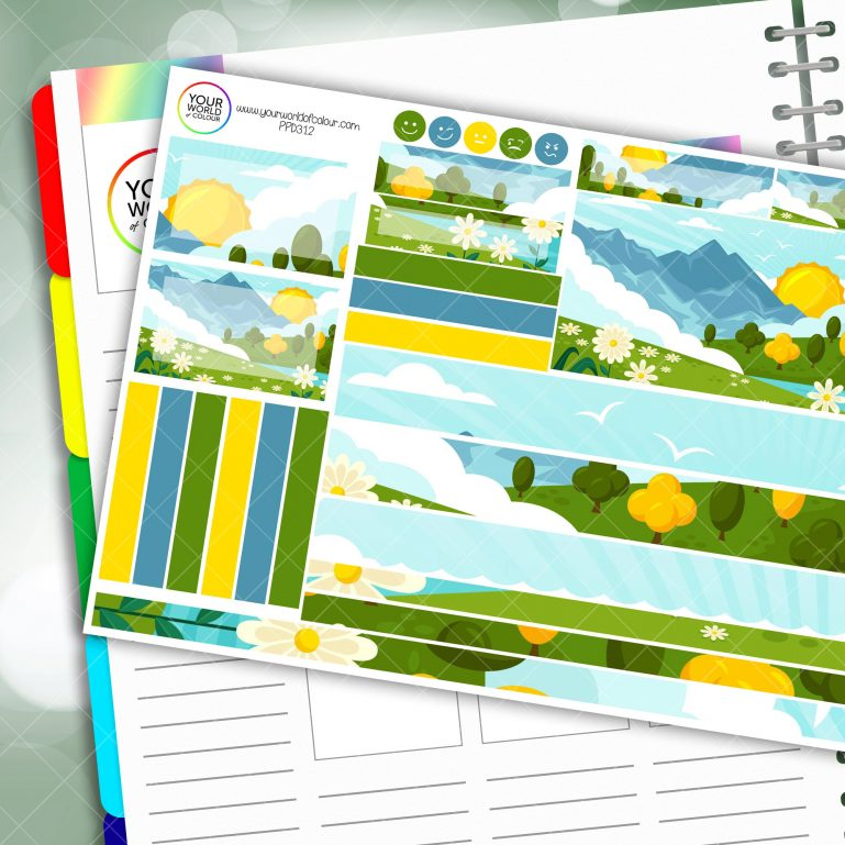 Daisy Fields Passion Planner Daily Sticker Kit