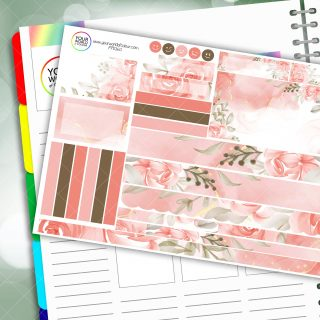 Pink Blush Passion Planner Daily Sticker Kit