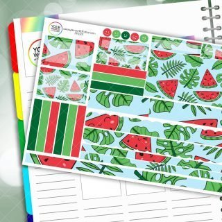 Watermelon Palm Passion Planner Daily Sticker Kit