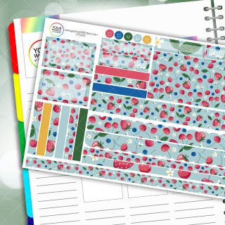 Berry Sweet Passion Planner Daily Sticker Kit