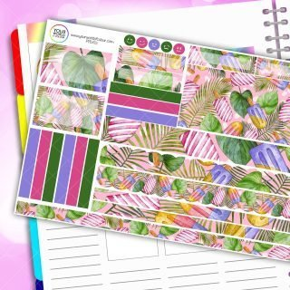 Tropical Lolly Passion Planner Daily Sticker Kit