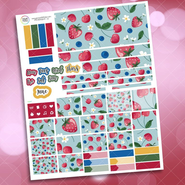 Berry Sweet Monthly Passion Planner Daily Sticker Kit s
