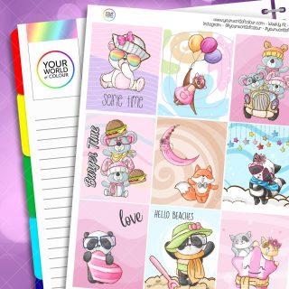 Cuteness Weekly Kit