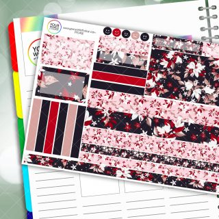 Mia Passion Planner Daily Sticker Kit