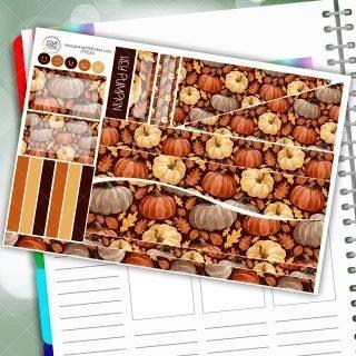 Hey Pumpkin Passion Planner Daily Sticker Kit