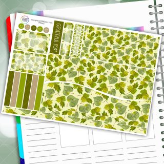 Leaf Biz Passion Planner Daily Sticker Kit