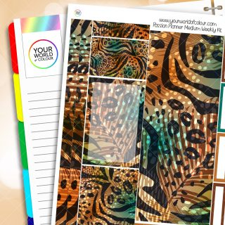 Leopard Print Passion Planner Weekly Kit